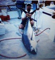fishhard72