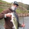 yot_fish
