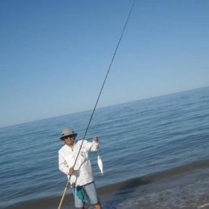 curvina on a 6#line and 14ft rod, North Mar de cortez, San FElipe