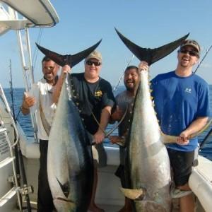 Giant Tuna With Osunas