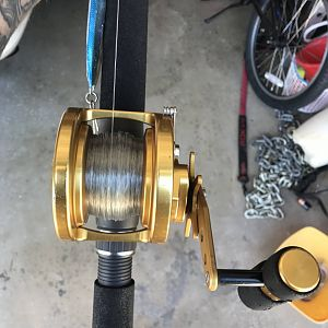 Reel for sale